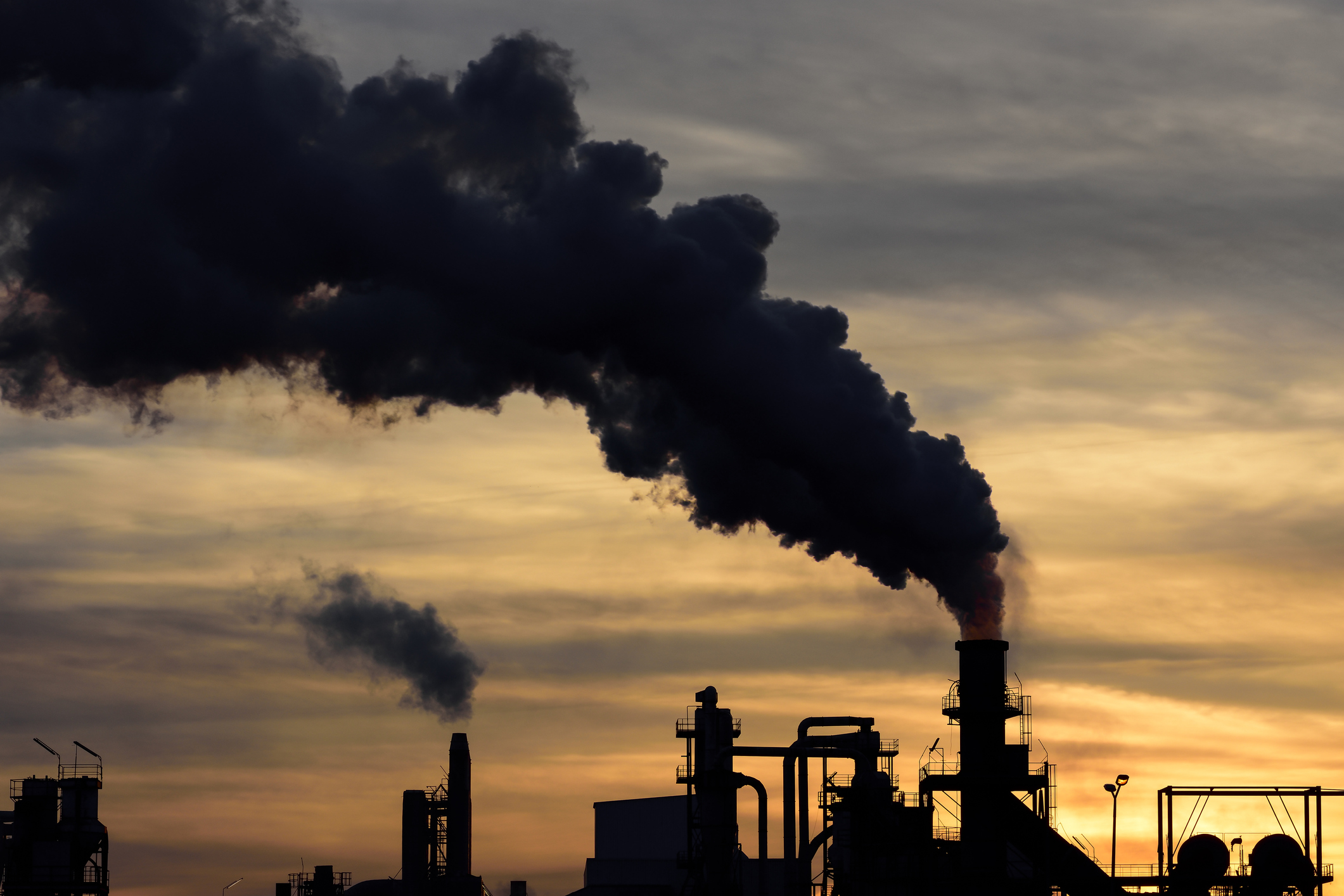 Millionaire CEO Is Bankrolling Think Tank Pushing Climate...