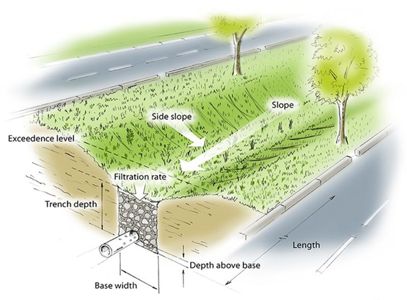 Vegetated swales along roadsides can help manage stormwater as runoff filters through plants or grass to a drainage system below ground.