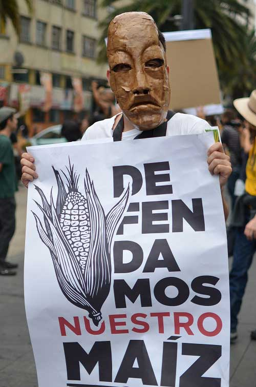 We will defend our corn!