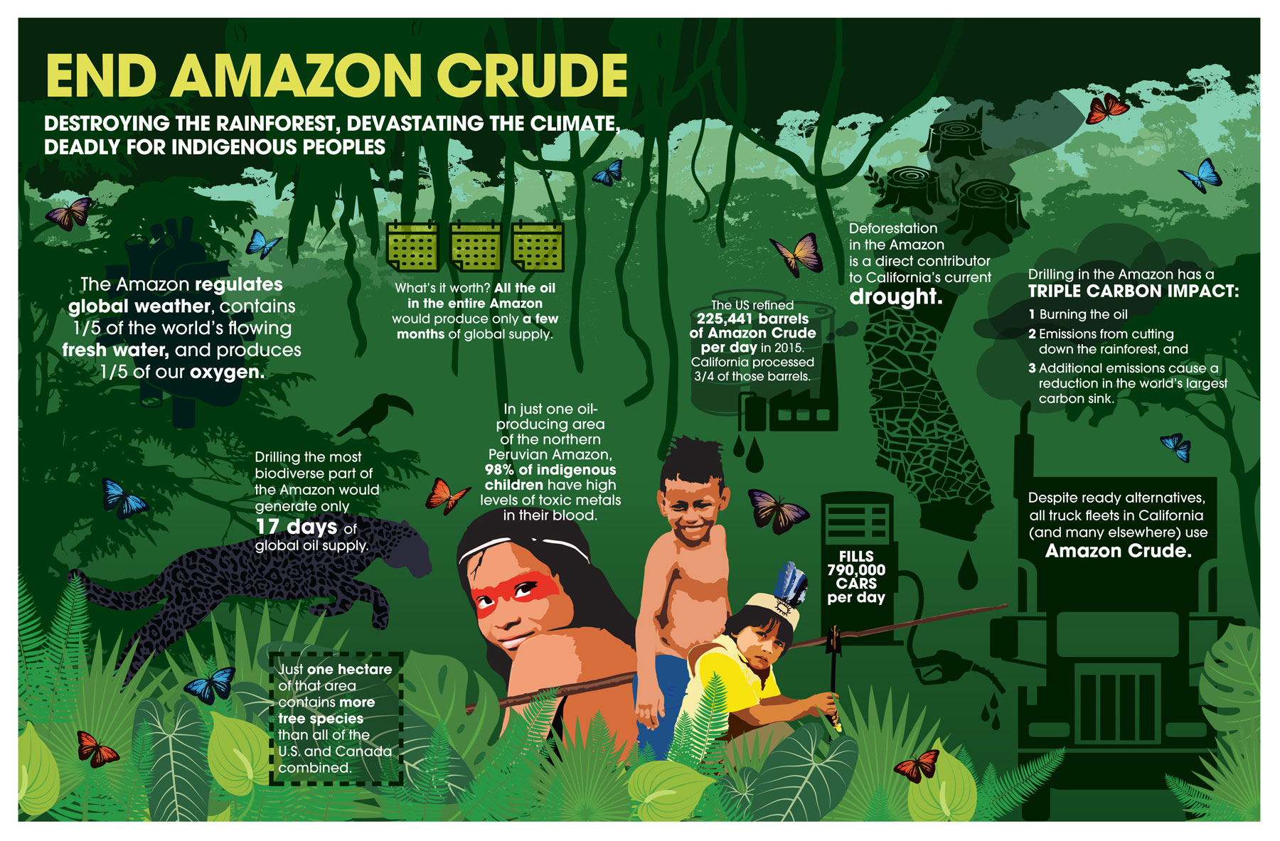 (Infographic by Amazon Watch. Click to enlarge.)
