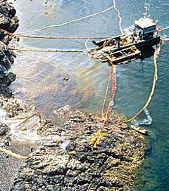 Activists Fight to Hold Exxon Mobil Accountable in Valdez Oil Spill Part One